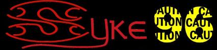 syke96